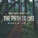 Bible verse: You have shown me the path to life. Psalm 16:11